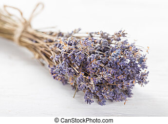 Lavender flowers on white background.