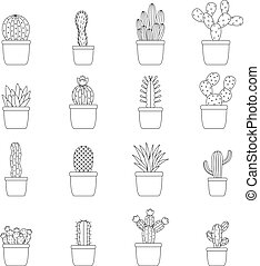 Set of cactus in pots, vector illustration