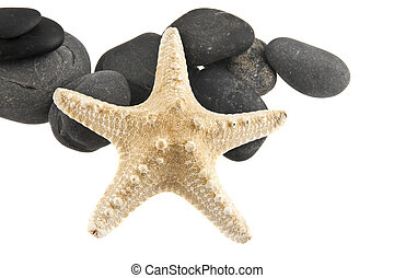 stones and starfish isolated on white background closeup