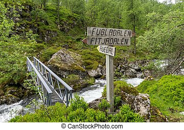 Norway wilderness - A typical Nordic landscape in western...