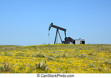 Oil Pumjack on the Prairie - an oil pumpjack on the prairie...