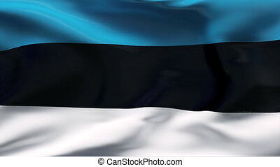 ESTONIA flag in slow motion - Creased cotton flag with...