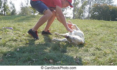 Young man and dog playing outdoor at nature. Labrador or...