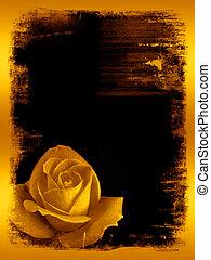 Rose golden grunge - background