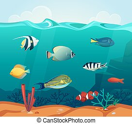 Ocean colourful fishes with corals at bottom - Underwater...
