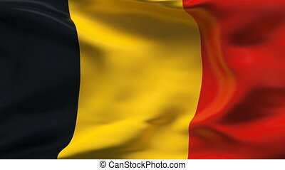BELGIUM flag in slow motion - Creased cotton flag with...