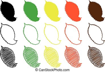 elm leaf - color set, elm leaf