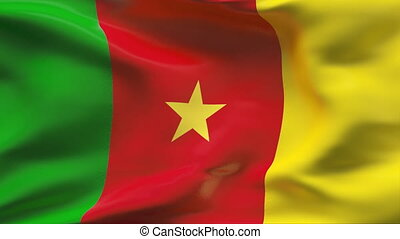 CAMEROON flag in slow motion - Creased cotton flag with...