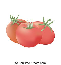 Group of three realistic tomatoes isolated on a white...