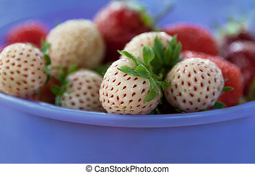 ripe varietal white strawberry with red seeds lies in the...