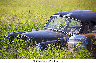 Rusty Car in the Tall Grass