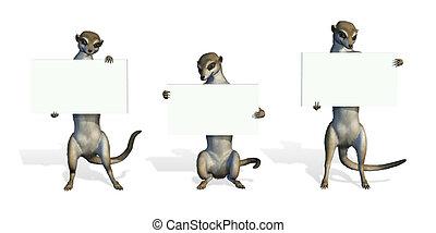Three Meerkats Holding Blank Signs - 3D render.