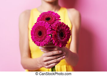 Bunch of gorgeous gerbera daisy
