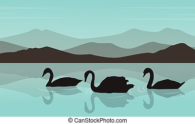 Silhouette of swan in the river with mountain background