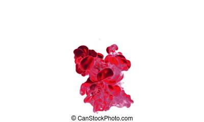 Close-up movement of red paint in water. Color drop in water ink swirling in water. Cloud of silky ink in water isolated on white background with alpha mask VFX. Version 10
