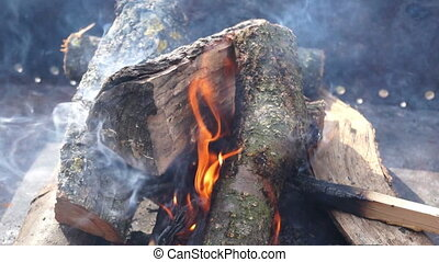 Bonfire trees day smoke - burning wood beam from left to...