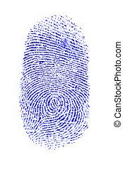 Fingerprint - a fingerprint on a white sheet of paper