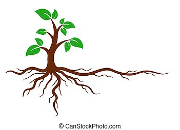 Green tree with roots. - Logo of the green tree with the...