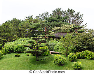 Botanical Garden - Japanese botanical garden on a raining...