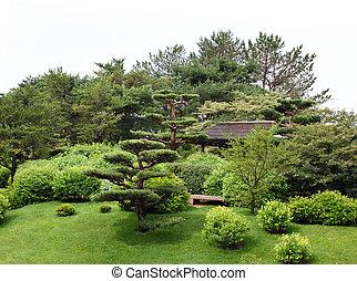 Botanical Garden - Japanese botanical garden on a raining...