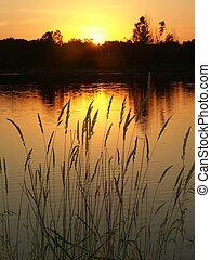 Bauman Park Lake - Illinois - Sunset over Bauman Park Lake...