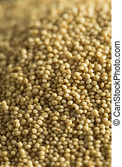 Raw Organic Amaranth Seed Ready to Use in Cooking