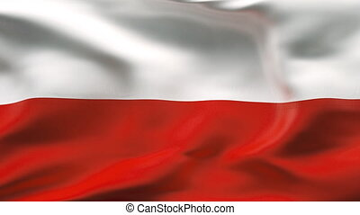 Poland flag - HIGHLY DETAILED FLAG WITH WRINKLES AND SEAMS