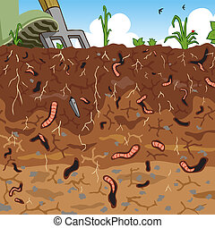 Soil - Editable vector illustration of earthworms in garden...