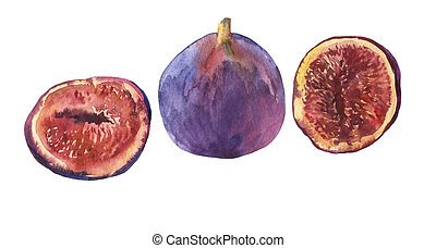 Composition whole fresh fig and figs sliced in half, showing...