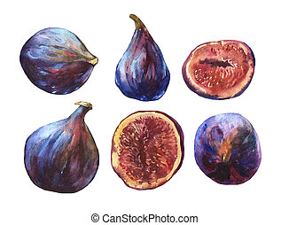 Set whole fresh figs and figs sliced in half, showing the...