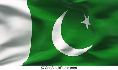 Pakistan flag - HIGHLY DETAILED FLAG WITH WRINKLES AND SEAMS