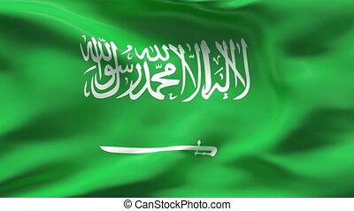 Creased PAKISTAN flag in wind