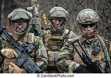 Norwegian Armed Forces soldiers - Norwegian Rapid reaction...