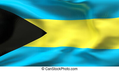 Creased BAHAMAS flag in wind