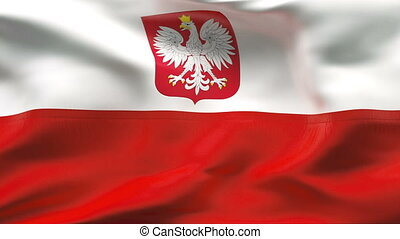Creased POLAND flag in wind - Highly detailed flag with...