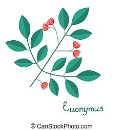 Spindle branch illustration - Spindle branch isolated vector...
