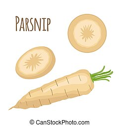 Fresh parsnip vegetable. Organic vegetarian food. Catroon...