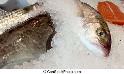 Frsh fish at the market - fresh fish on ice at the market