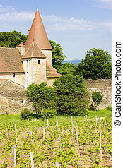 Burgundy, France - Chateau de Nobles, Burgundy, France