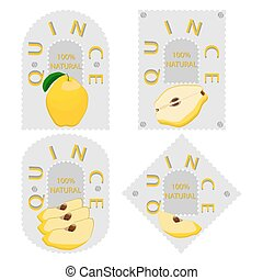 yellow fruit quince - Vector illustration logo for whole...