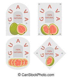 fruit red guava