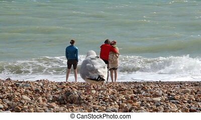 UK, Brighton. Young couple and a young woman are on the shore of Atlantic ocean. A couple is hugging, a girl is standing side by side. The seagulls are walking on the foreground.