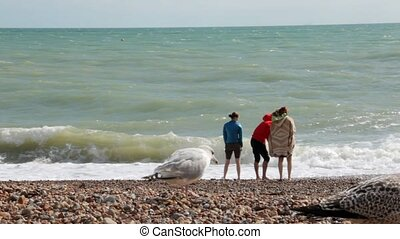 UK, Brighton. Two girls and a guy on summer vacation standing on the beach near the water of Atlantic ocean. The guy throws pebbles into the ocean. The seagulls are walking on the foreground.