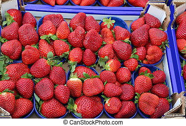 baskets Ripe red strawberries grown using the techniques of...