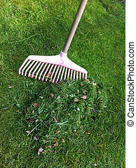 Rake - A heap of cut grass is raked up with a pink plastic...