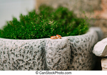 Wedding rings on the stones in the grass, among the...