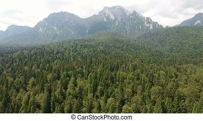 Drone flying over forest in mountains - Aerial view - flying...