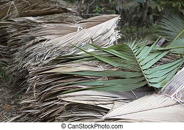 Dried palm tree leaves at wayside - Dried palm tree leaves...