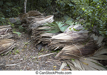 Dried palm tree leaves at wayside - Dried palm tree leaves...