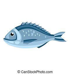 Dorada fish. Isolated illustration of seafood on white...
